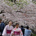 5 tajni za dugovečnost koje možemo da usvojimo od Japanaca!