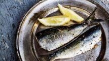 Šta je zdravije – tunjevina ili sardina?