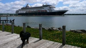 Svet krstarenja – novi protokoli pred obnavljanje plovidba u SAD-u