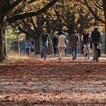 Evo da li je šetnja dovoljna fizička aktivnost?