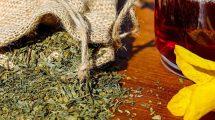 Aromaterapija: Koji miris može da vas opusti, uspava, popravi raspoloženje!