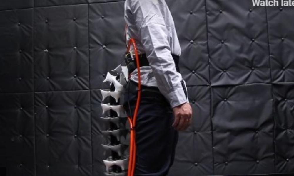 LUD IZUM: Japanci prave mehaničke repove za fizikalce (VIDEO)