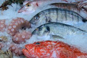 NEVEROVATNO SAZNANJE! U Srbiji se riba čuva u FORMALINU koji je KANCEROGEN