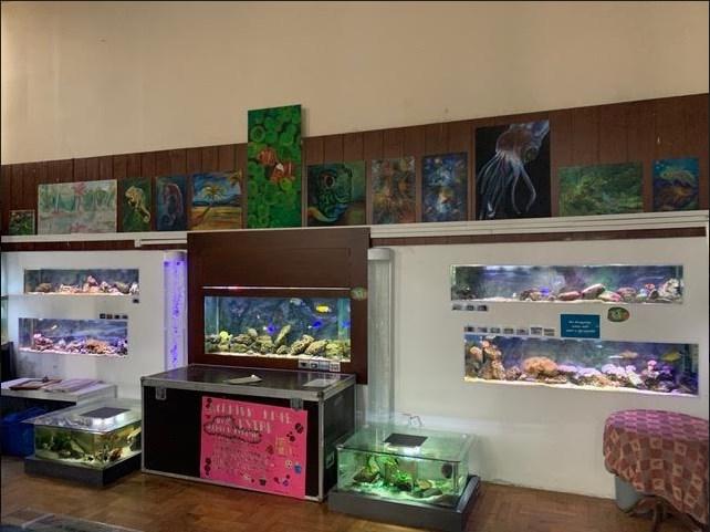 U Javnom akvarijumu i tropikarijumu Beograd svakodnevno možete videti ribe, životinjice i biljke iz svih krajeva sveta!, Gradski Magazin