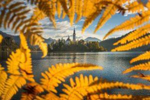 Ljubljana na Tajmovoj listi najboljih turističkih destinacija