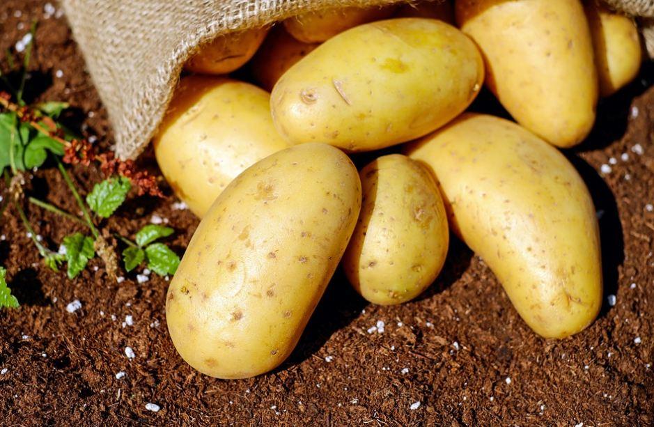RECEPT DANA: Kroketi od krompira
