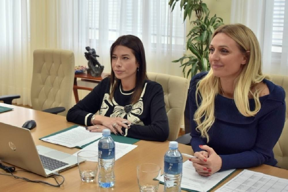 Vujović: Kontruktivni razgovori sa MMF-om o zelenim projektima